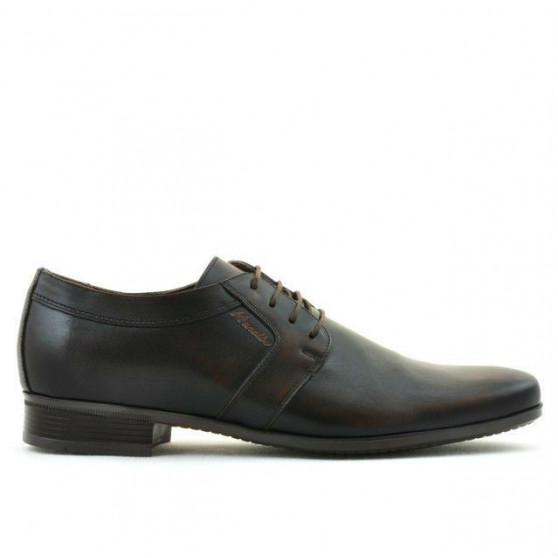 Men stylish, elegant shoes 743 a brown