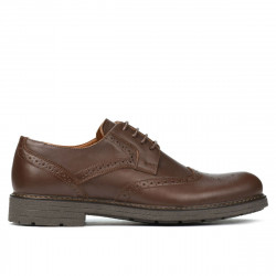 Men stylish, elegant shoes 894 brown